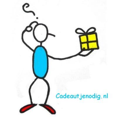 Flavicon Cadeautjenodig.nl