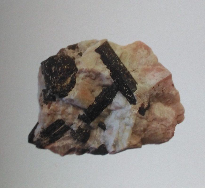 Hoornblende kristallen in calciet matrix