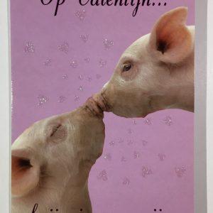Hobbyfun 2848 Valentijnskaart, Dikke zoen