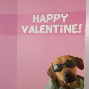 Hobbyfun 2867 Valentijnskaart, Lekker ding